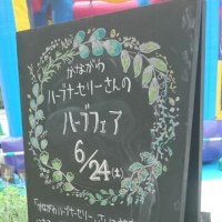 今日は埼玉県大宮のfan様でハーブ講習会でした。