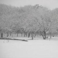 雪の日の小達