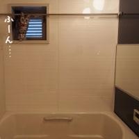 お風呂の窓の、ミルキー。