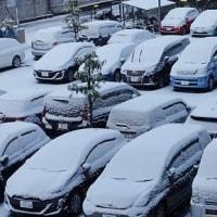 名古屋市内も積雪と氷