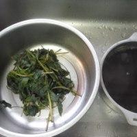 紫蘇ジュースを作りまし