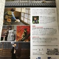 UCC Cafe MERCADO et ねこの京都