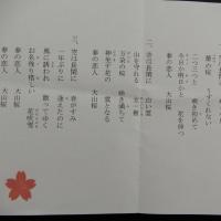 奥迫川の桜 ① 2017.04.02 「300」
