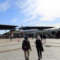 ひたち海浜公園 コキア2016