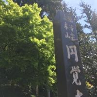 久しぶりの鎌倉へ