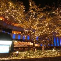 2016年度西新宿のイルミネーション3