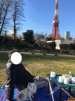 芝公園でピクニック&お散歩