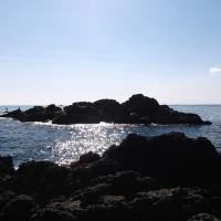 磯釣遊会 12月度例会  串本 永田渡船
