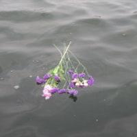カルマ解消⑥の花を流しました&新しいPC