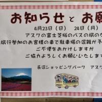 明日は 富士芝桜のバスの旅です。