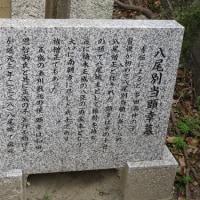 常光寺(3)八尾別当顕幸の墓