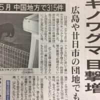 続・クマ目撃情報