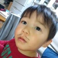 鯖太郎2歳になる