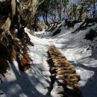 初山歩きは雪の大山 1月初旬