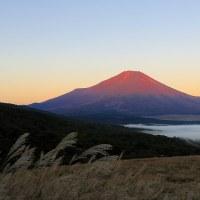 朝焼けの富士を望む