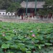 北京 頤和園 昆明池