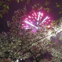 在来線を利用し森町桜祭へ・・・ローカル線魅了