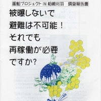 風船プロジェクト in 柏崎刈羽 調査報告書が出来ました。