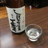 朝帰りの日本酒