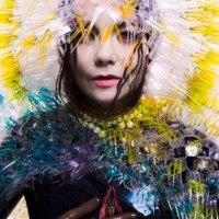 Björk「Black Lake」その拘束の愛は、いまも子宮のなかに。