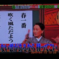 1/20 添付の俳句 春一番が気になる