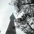 曇り空にスカイツリー