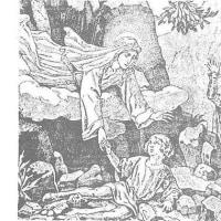 『ばらの聖女 ヴィテルボの聖ローザ』企画:デルコル神父、文:江藤きみえ 15