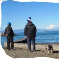 富士山が最高の一日