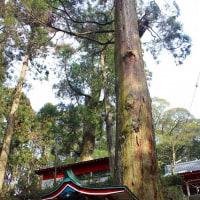 住吉神社(鹿児島県曽於市)その3