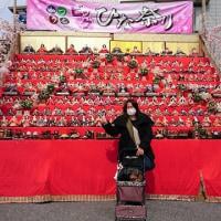 勝浦、ビックひな祭り