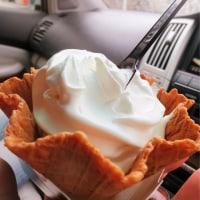 これからの季節ソフトクリームは天才なのだ!