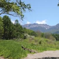 八ヶ岳わんわんウォークに参加しました。