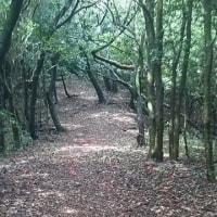 朝の散歩 隠居岳