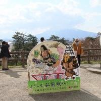 弘前城桜満開!