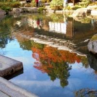 湖東三山の紅葉(3)百済寺-2016年11月26日