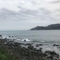 22日 今朝の西伊豆安良里&黄金崎のダイビング情報!