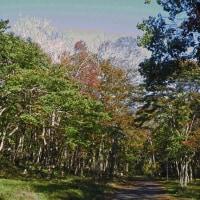 色づく秋 萩の里自然公園