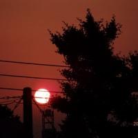 早朝の日の出(4:55頃)