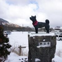 冬のくじゅう18(ヨシ)