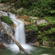 2017.07.08 比良の滝/八ッ淵の滝