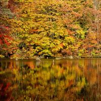 曲沢沼と大沢沼の紅葉