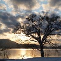 冬の景色♪