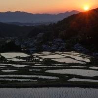 細川の棚田(2)