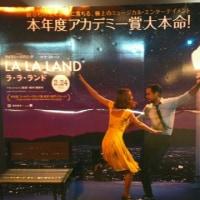 映画『ラ・ラ・ランド』は、旧新しさが融合した青春ミュージカル。