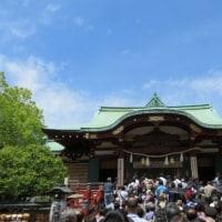 亀戸天神 藤祭り 2017