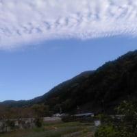今年もダリア園(川西黒川)へ