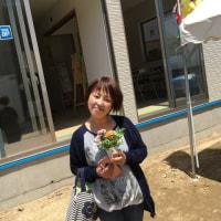 5月13・14日開催 現場見学会