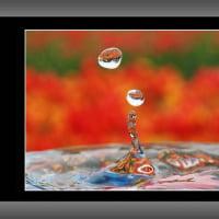 水滴撮影の習作