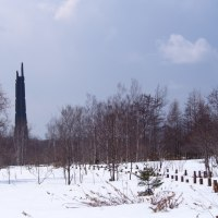 野幌森林公園・今日の大沢口とふれあいコースから百年記念塔を