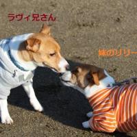 12/4 JFAクラブ仙台大会